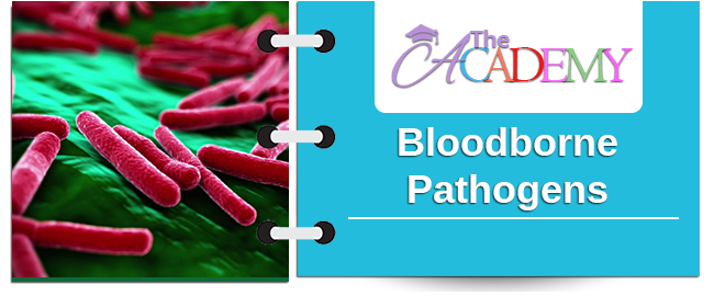 BloodBorne Pathogens main banner