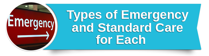 Types of Emergency and Standard Care for Each small banner